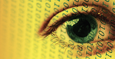 image of an eye on a yellow background